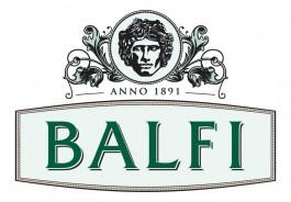 balfi_logo_vilagosra