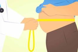 bacteria_obesity